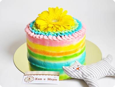 Разноцветный торт с герберой