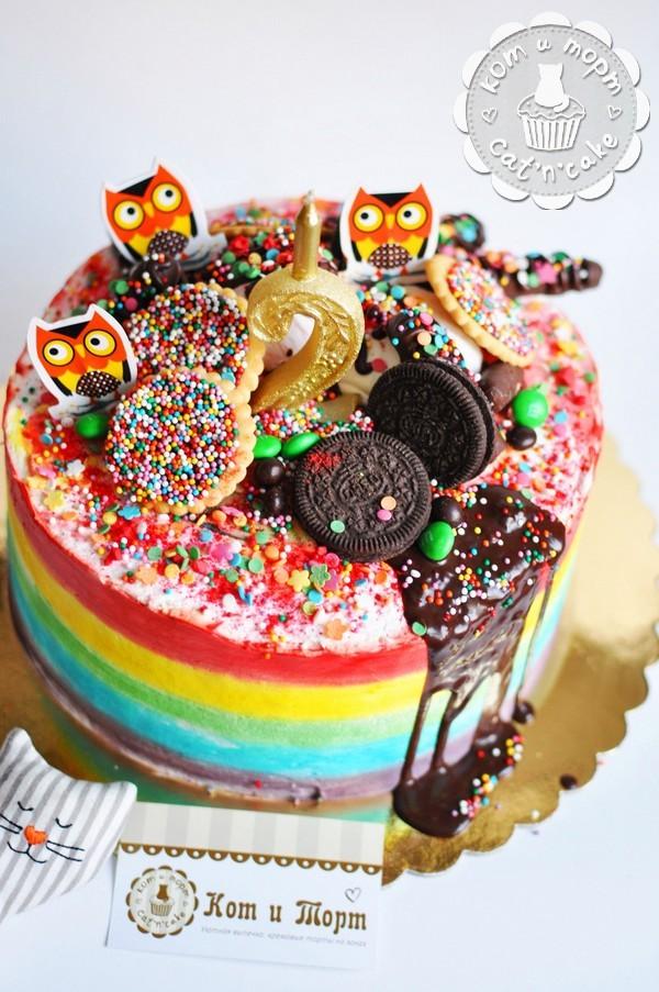 Яркий радужный торт с совами