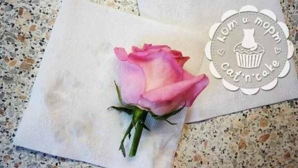 Как украсить торт живыми цветами05
