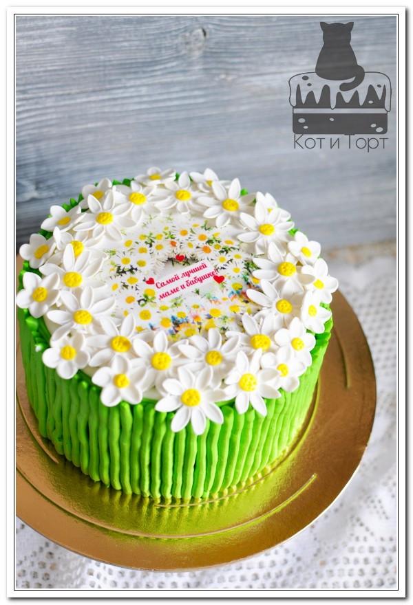 Торт с ромашками для мамы и бабушки