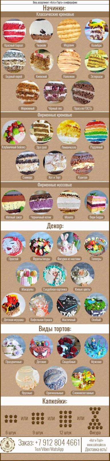 Инфографика Кота и Торта