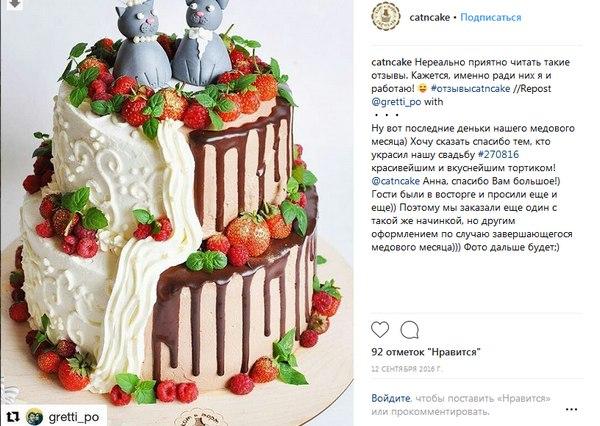 отзыв кот и торт