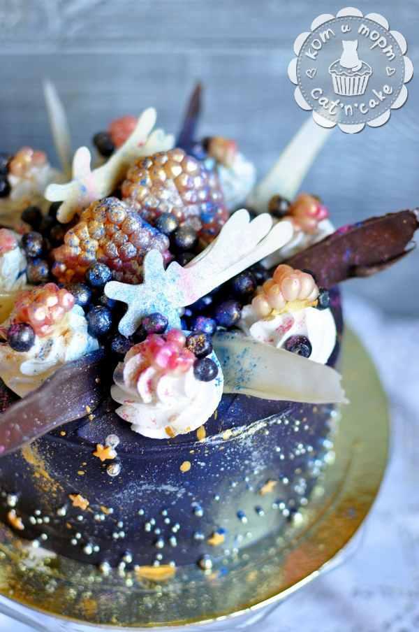 Торт космическо-ягодный