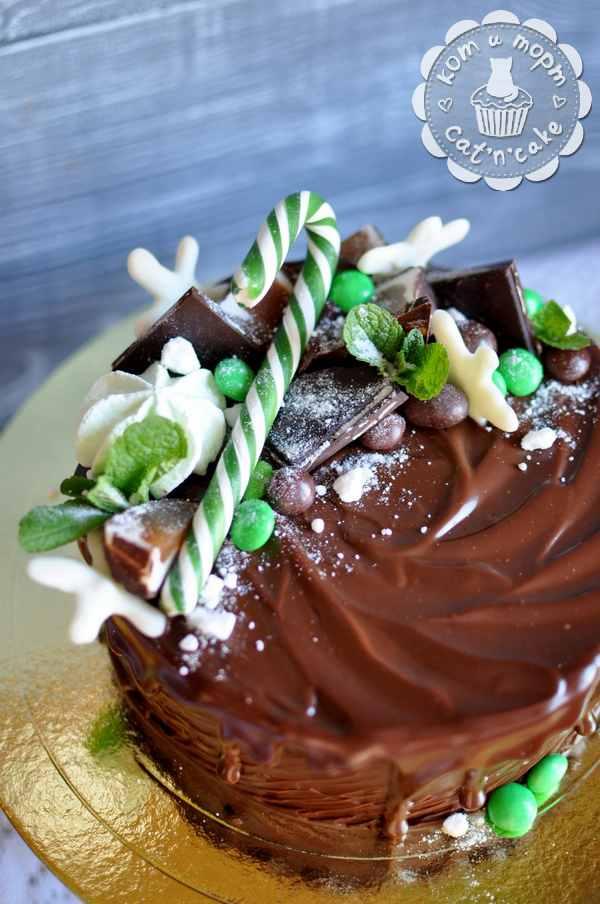 Шоколадный торт с мятой