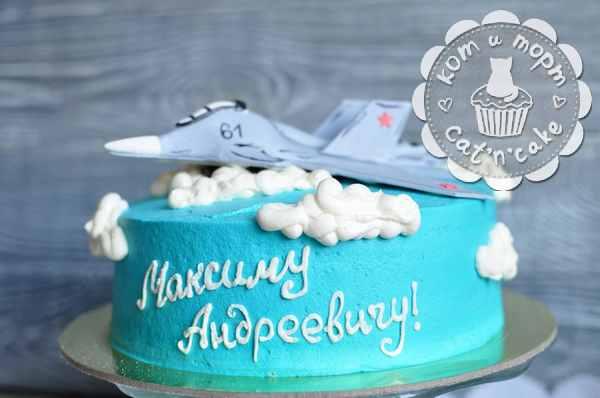 Торт с истребителем-2