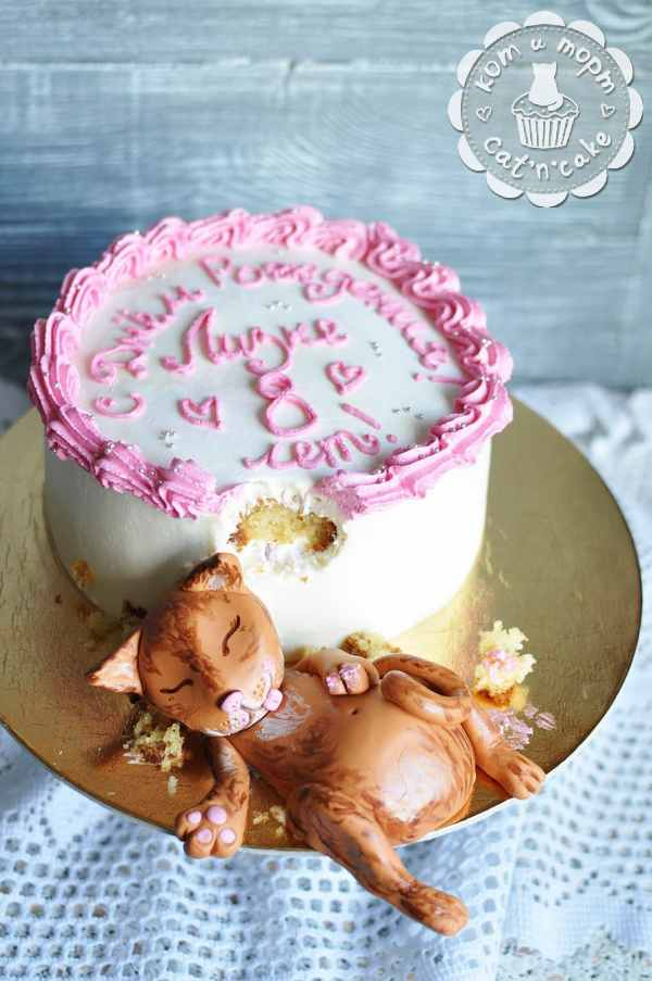 Торт с объевшимся котом