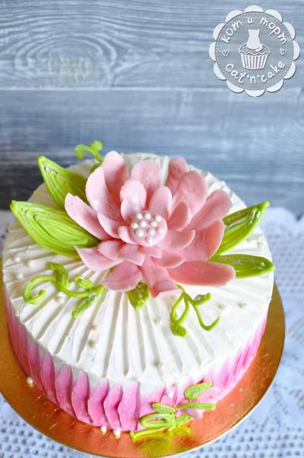 Торт с розовым шоколадным цветком