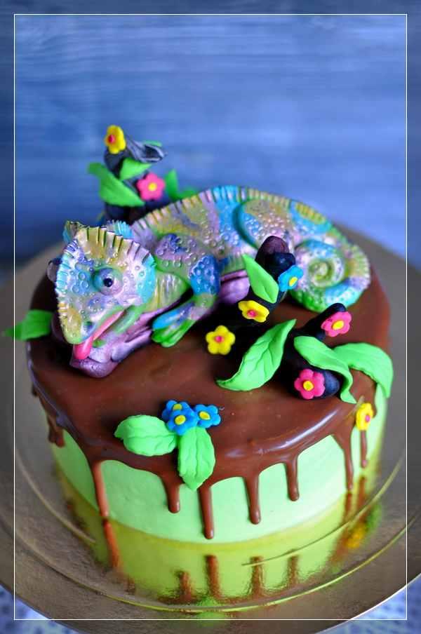 Торт с хамелеоном